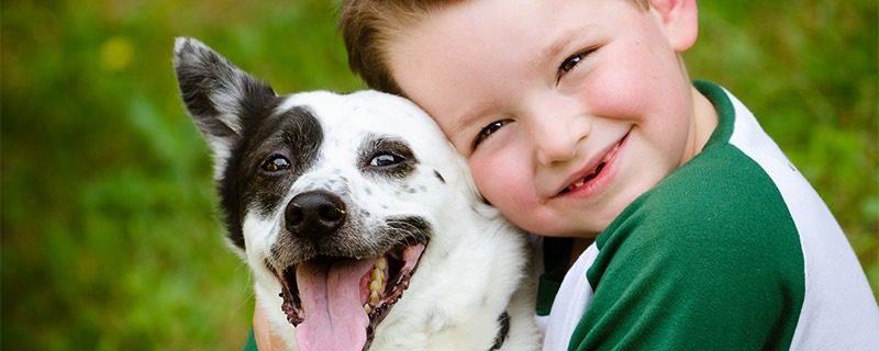 Παιδί και ζωοφιλία